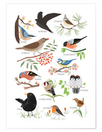 Premium poster  Garden birds (German) - Sandy Lohß