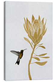 Canvas print  Hummingbird & flower I - Orara Studio