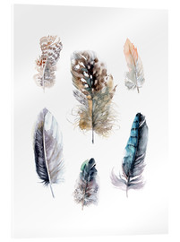 Acrylic print  Feathers collection - Verbrugge Watercolor