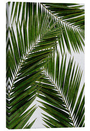 Canvas print  Palm leaf III - Orara Studio