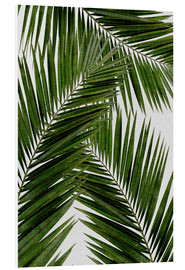 Foam board print  Palm leaf III - Orara Studio