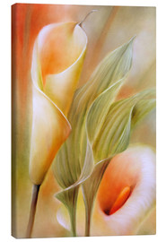 Canvas print  calla - Annette Schmucker