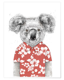 Premium poster  Koala Bear with Hawaiian Shirt - Balazs Solti