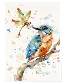 Premium poster  Interesting relationships (kingfisher and dragonfly) - Sillier Than Sally