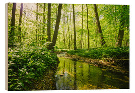 Wood print  Fresh green forest - Oliver Henze