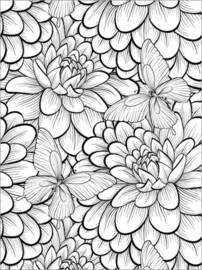 Colouring poster  Flowers and butterflies