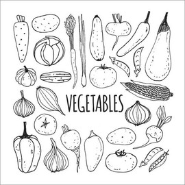 Colouring poster  Vegetable cuisine