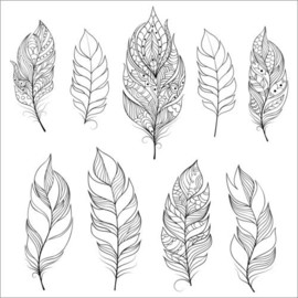 Colouring poster  Feathers