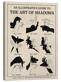 Canvas print  The Art of Shadows - Mary Urban