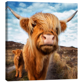 Canvas print  Highland cattle with calf - Westend61