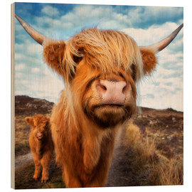 Wood print  Highland cattle with calf - Westend61