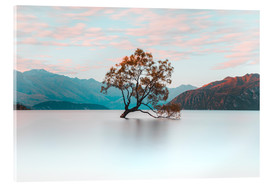 Acrylic print  The wanaka tree - Nicky Price