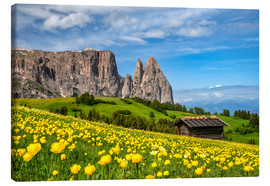 Canvas print  Spring on the Alpe di Siusi in South Tyrol - Achim Thomae