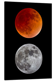 Aluminium print  blood moon-super moon-full moon - MonarchC