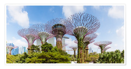 Premium poster  The Supertree grove in Singapore - Matteo Colombo