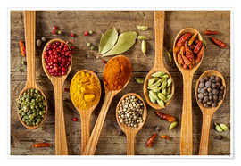 Premium poster  Colorful spices in wooden spoons - Elena Schweitzer