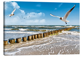 Canvas print  Seagulls, Sylt - Art Couture